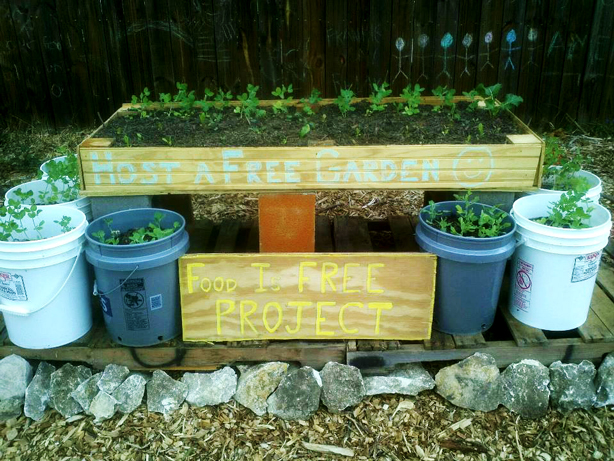 food-is-free-first-garden