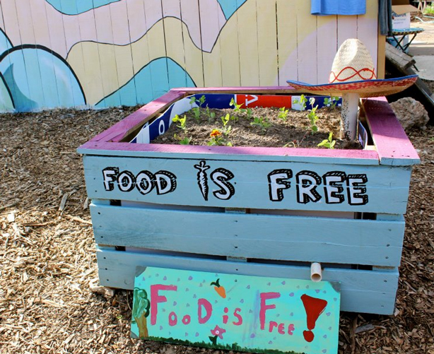 food-is-free-wicking-bed