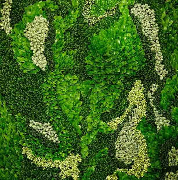 az-leafy-detail
