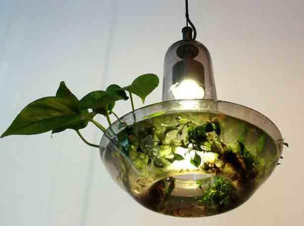 Ten Cool Plantable Light Fixtures