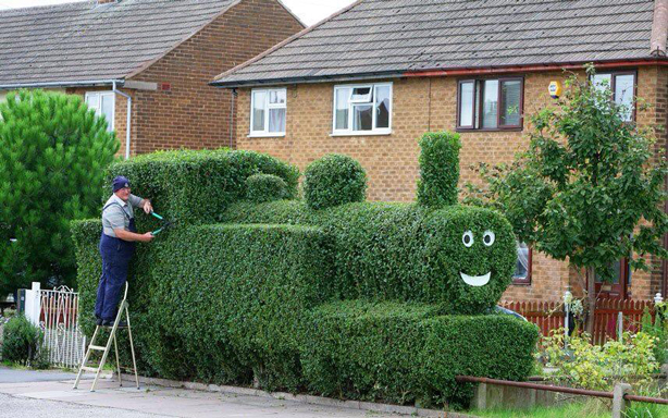billy-goodnick-crimes-train-hedge