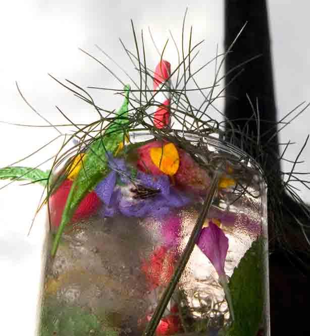 Chelsea-fringe-cocktail-garnish