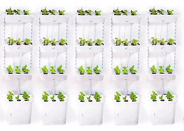 Eliooo-vertical-gardens-multiples