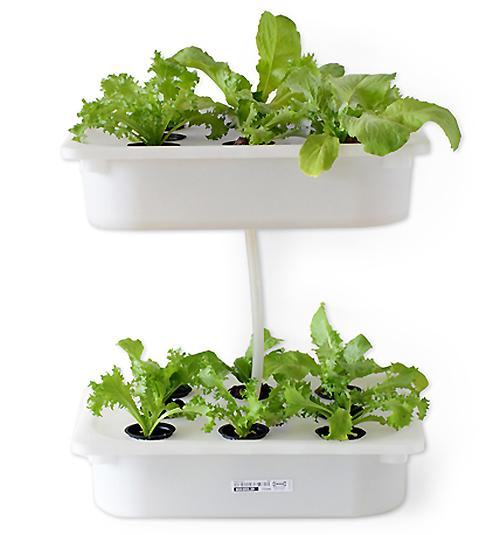 Eliooo-verticall-jardim-stacked-2
