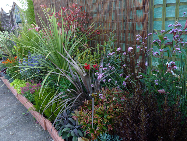 Five Easy Steps For Creating A Garden Border No Experience