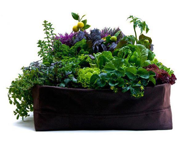 woolly-pockets-lilgreenmeadow-planter
