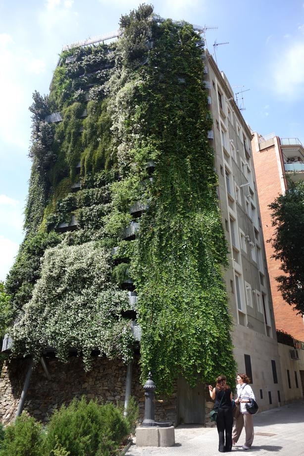 jardi-tarradellas-green-side-wall-urbangardensweb-private-visit-barcelona