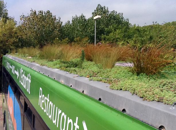 phytokinetic-verde-azotea bustop-urbangardensweb