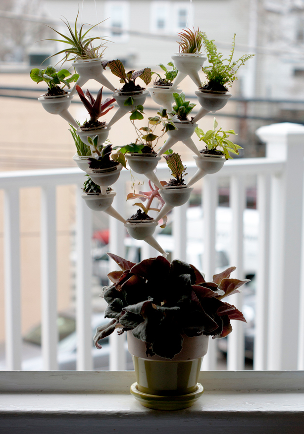 evan-gant-mini-planter