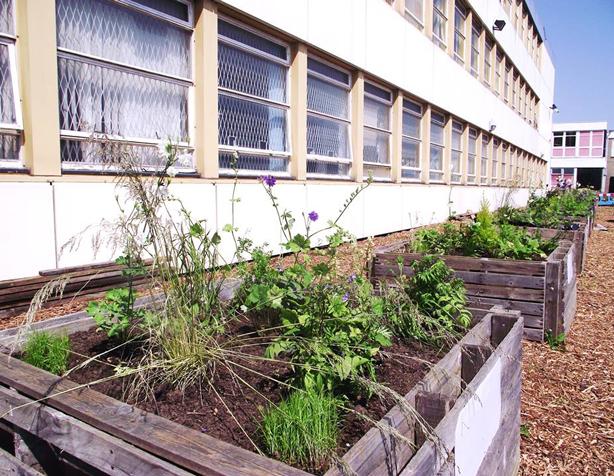 global-garden-raised-beds