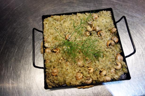 la-calendula-snails-urbangardensweb
