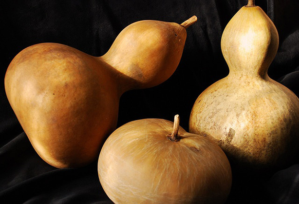 gourds-piterest