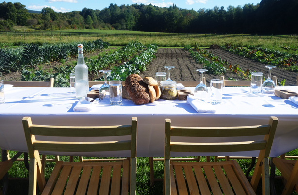 table-horiz-oif-urbangardensweb