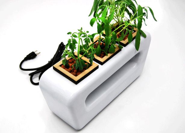 behance-cargo-hydro-planter