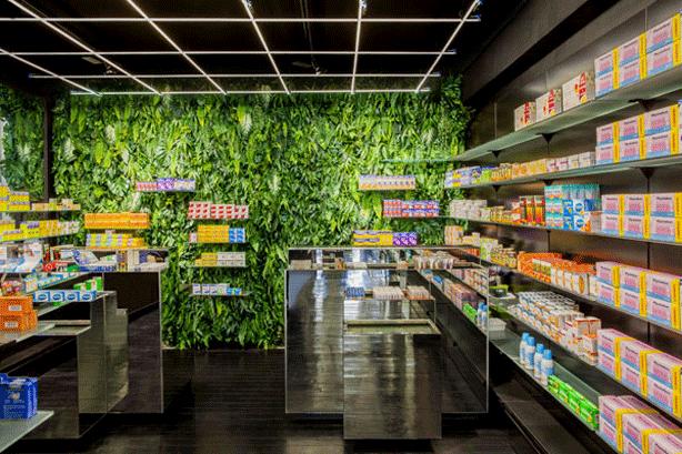 mapharmacie-vertical-garden-living-walls-of-medicinal-plants