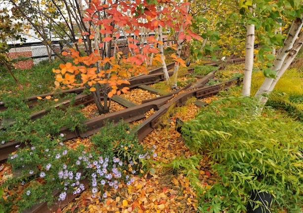 High Line Plants Railroad Ties Steven Severinghaus