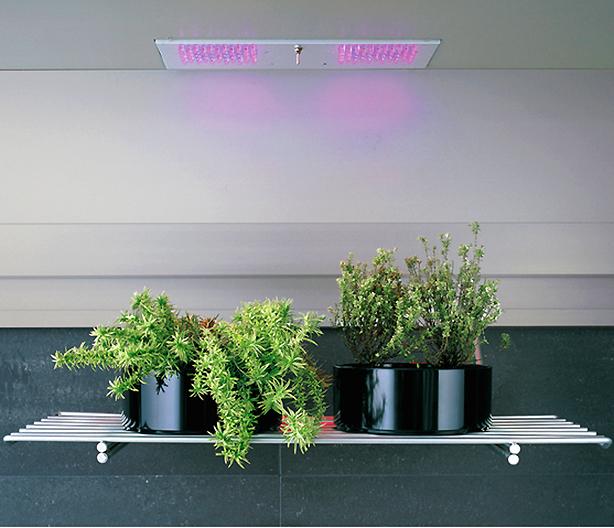 arclinea-accessories-plant-shelf-with-overhead-lights