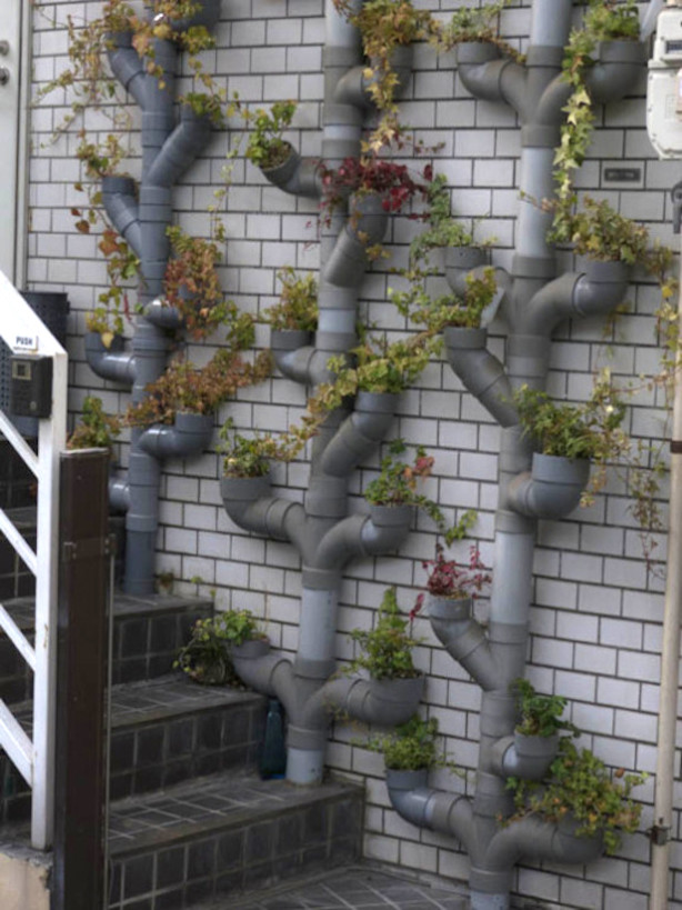 vertical-garden-made-with-pvc-pipes