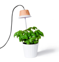 Design-Centric Indoor Plant Lights For Urban Living