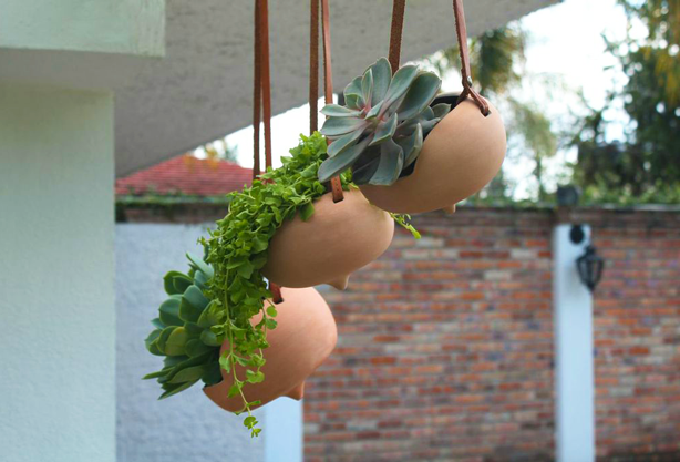 la-tlapalaria-hanging-planters-outdoors