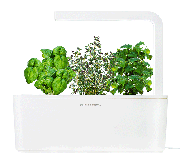 Smart-Herb-Garden-click-and-grow-urbangardensweb