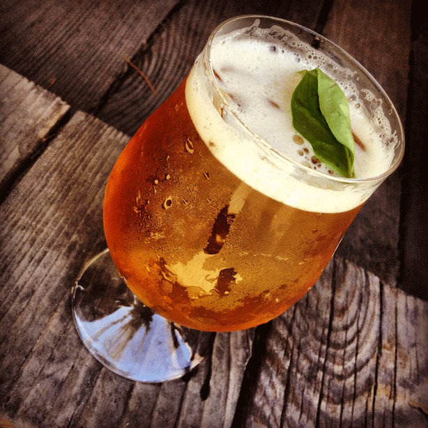 click-and-grow-basil-and-beer