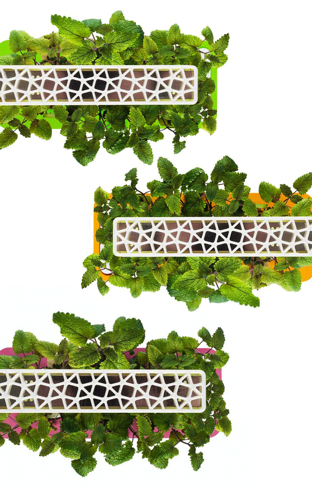 click-and-grow-smart-herb-garden-3-colors-urbangardensweb