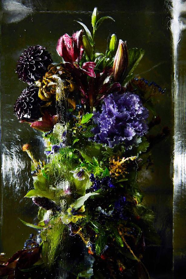 iced-flowers-makoto-azuma-urbangardensweb