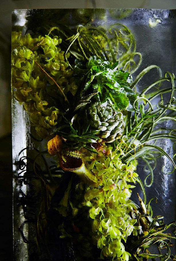 iced-flowers-makoto-azuma-vert-urbangardensweb