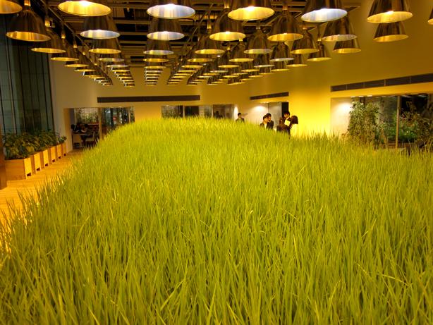 pasona-rice-paddy4_urbangardensweb