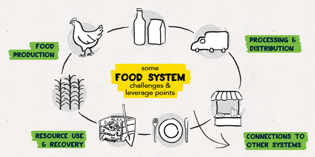 Food_system_leverage_pointsbiomimicry_challenge_urbangardensweb