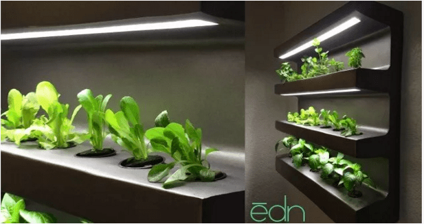 EDN indoor farming unit