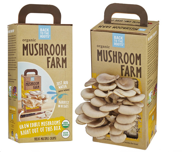 back-to-the-roots-mushroom-farm-urbangardensweb