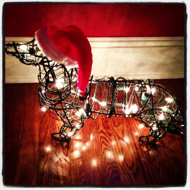 Doxi lights up the Holiday Season