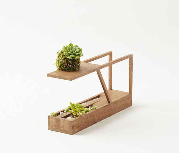 MINI_II_Walnut_w_Kokedama_angle_1024x1024
