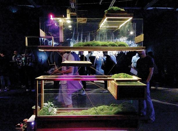 plant-in-city-microwave-festival-urbangardensweb