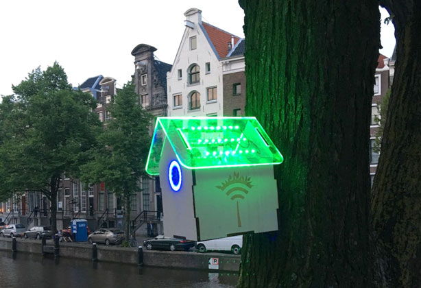 smart birdhouses