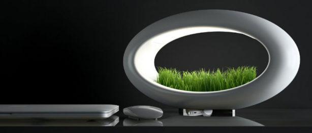 Desktop Hydroponic Garden