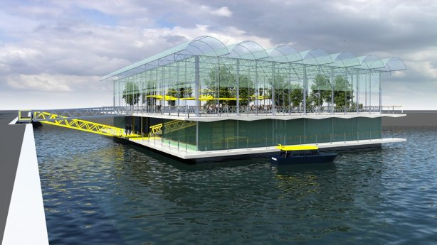 Floating Urban Dairy Farm