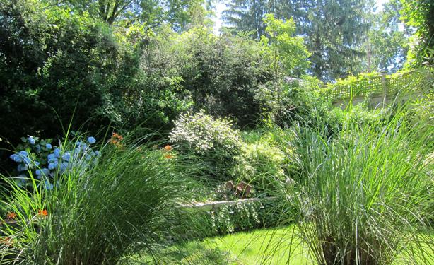 Connecticut-house-and-garden-makeover-ornamental-grasses-robin-plaskoff-horton-urbangardensweb