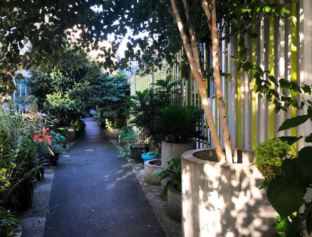 London_secret_garden_urbangardensweb