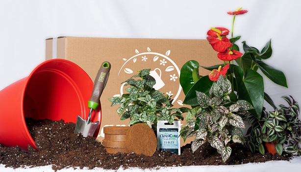 plant_package_container_garden_subscription_box_urbangardensweb