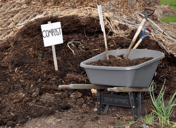 How to compost from recycled materials