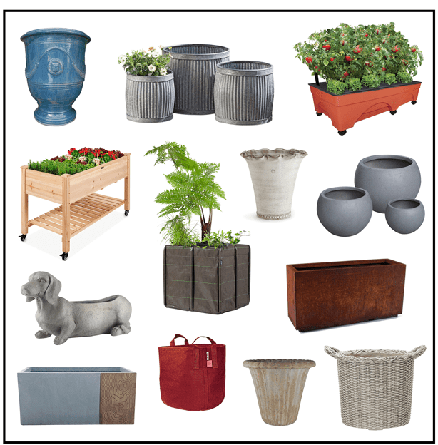 How To Choose The Best Container Garden Pot For Each Plant - Urban Gardens