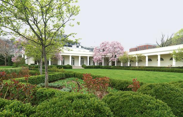 bunny_mellon_designed_white_house_rose_garden_with_saucer_magnolias