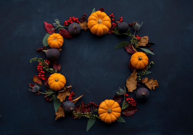 Talking Turkey About a Safe Thanksgiving - Urban Gardens