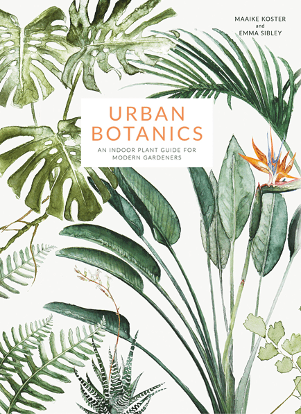 urban_indoor_plants_guide_for_modern_gardeners