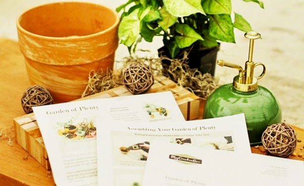 monthy gardening subscription box