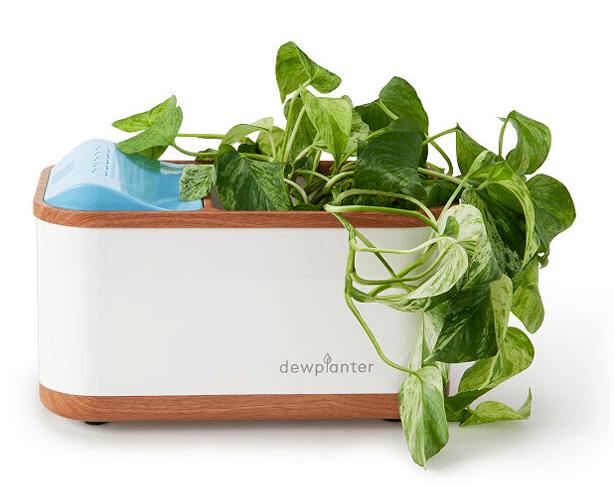 Dewplanter smart planter