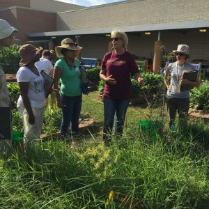 Our Classes Bolster Local Food Production